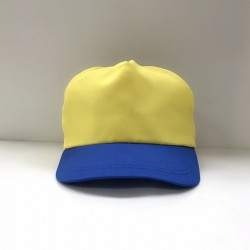 帽子(黃頂藍眉)